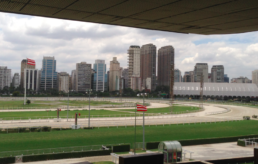 Sao Paulo Horse Racing Club